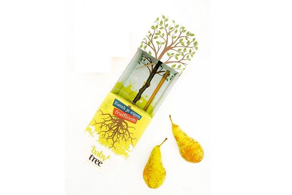Baby-Tree-Birne